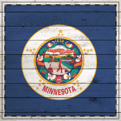 Scrapbook Customs - State Sightseeing Collection - 12 x 12 Paper - Wood Flag - Minnesota