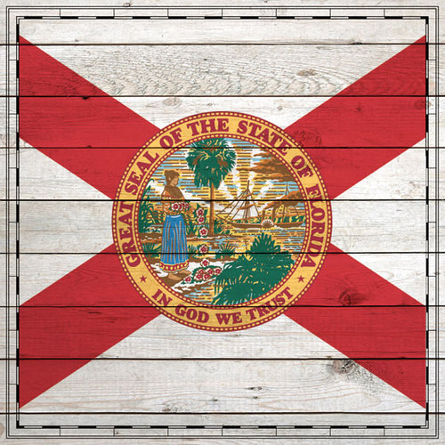 Scrapbook Customs - State Sightseeing Collection - 12 x 12 Paper - Wood Flag - Florida